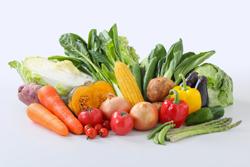 ハルタの野菜